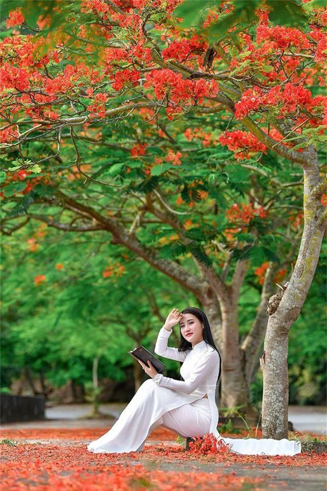 Cô gái xinh đẹp thả hồn trên con đường hoa phượng đỏ Hải Phòng - 4