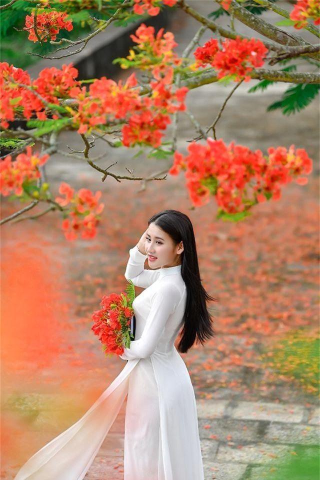 Cô gái xinh đẹp thả hồn trên con đường hoa phượng đỏ Hải Phòng - 6