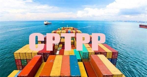 Bộ Tài chính đã giao Tổng cục Hải quan là đơn vị chủ trì xây dựng Nghị định quy định xác minh xuất xứ đối với hàng hóa nhập khẩu... Nguồn: Internet.
