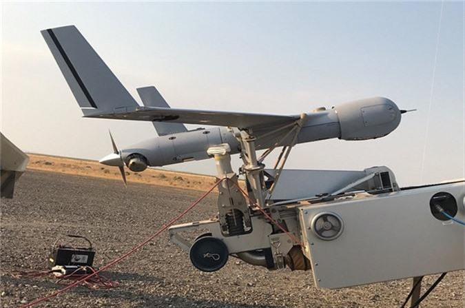 UAV trinh sat Viet Nam mua cua My loi hai the nao?-Hinh-5