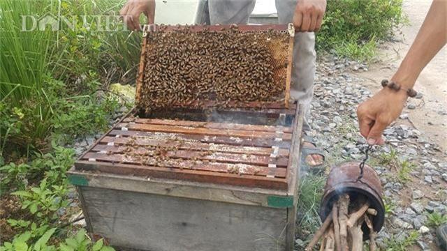 doc dao: luyen ong lam mat ngot tu...bien man, thu 2-3 trieu/ngay hinh anh 3