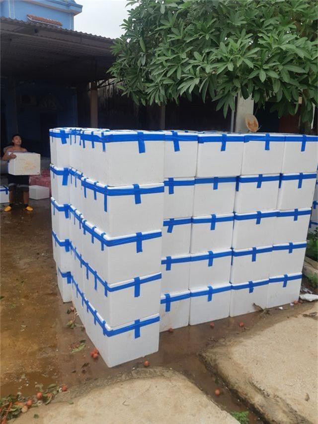 Lái buôn Trung Quốc tăng mua gấp đôi, mỗi ngày 3.000 tấn vải thiều - 4