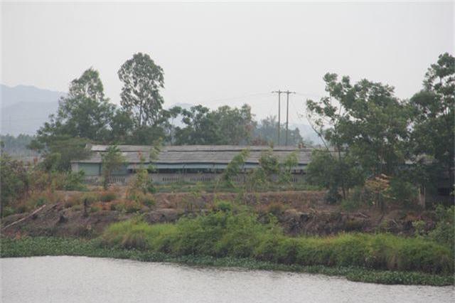 Những bến sông đa năng bị các trang trại chăn nuôi bức tử - 5