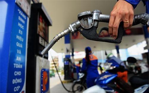 Xăng dầu dự trữ quốc gia sẽ cất kho riêng, luân phiên đổi hàng