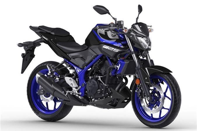 Can canh Yamaha MT-25 2019 gia hon 79 trieu dong hinh anh 1