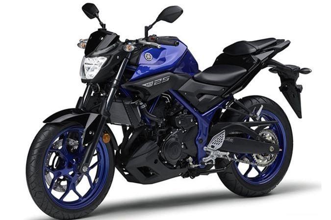 Can canh Yamaha MT-25 2019 gia hon 79 trieu dong hinh anh 2