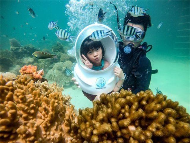 5 điểm ngắm san hô đẹp nhất Việt Nam, nhất định phải khám phá một lần trong đời - 3