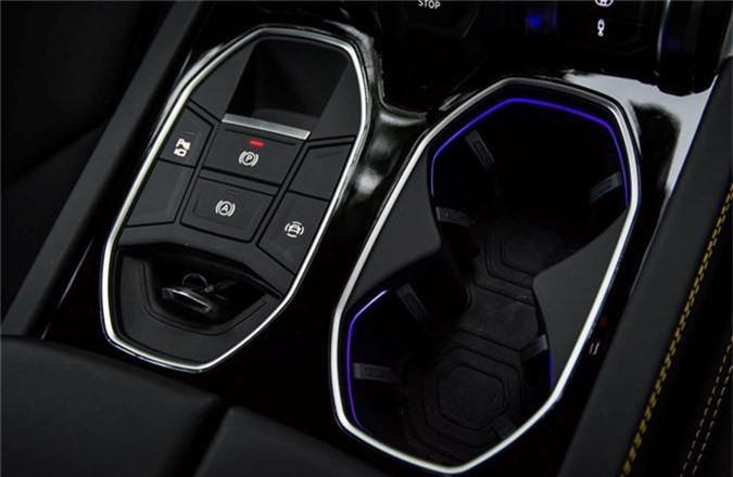 Dai gia Dang Le Nguyen Vu tau Lamborghini Urus 22 ty dong-Hinh-8