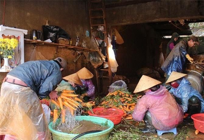 Tuy thiệt hại nặng do đợt mưa lũ vừa qua nhưng vựa rau Đà Lạt - Lâm Đồng vẫn đảm bảo cung cấp cho các tỉnh, nhất là TP.HCM (Ảnh: VH)