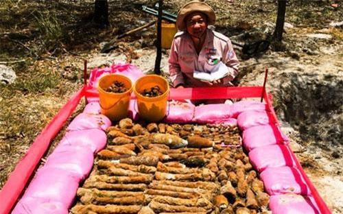 Hàng ngàn quả đạn pháo được phát hiện. Ảnh: MAG Quảng Trị.