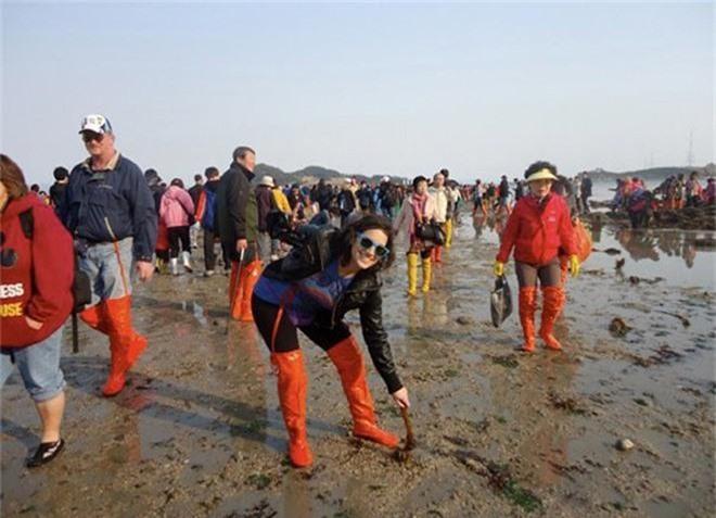 Đến hẹn lại lên: Con đường giữa biển Hàn Quốc 2 năm mới xuất hiện 1 lần, kỳ bí như vậy nhưng người dân vẫn thản nhiên… ăn mừng - Ảnh 7.
