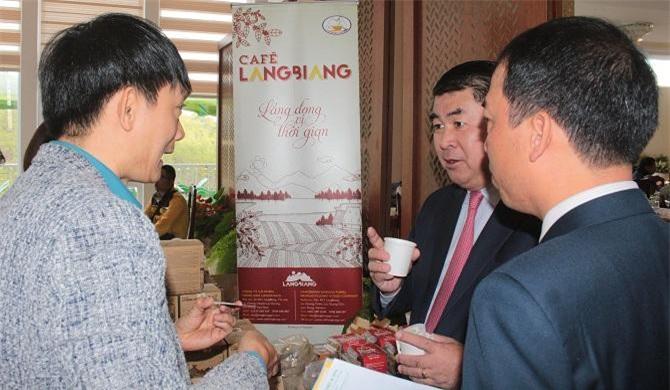 Các doanh nghiệp Thái Lan rất quan tâm đến cà phê của Lâm Đồng - Việt Nam (Ảnh: VH)