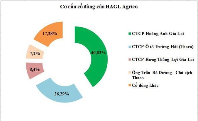 Cơ cấu cổ đông của HNG sau đợt chuyển đổi trái phiếu (Nguồn: HK tổng hợp)
