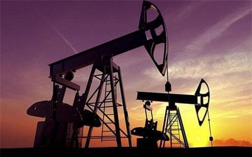 Giá xăng, dầu (22/8): Tiếp tục tăng