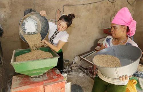 Gia đình chị Hà Thị Thảo, dân tộc Thái, ở thôn Phan Thượng, xã Nghĩa Lợi, thị xã Nghĩa Lộ (Yên Bái) được vay 50 triệu đồng từ Chương trình cho vay hộ gia đình sản xuất kinh doanh vùng khó khăn để đầu tư máy xay xát gạo, tạo thêm việc làm và thu nhập. Ảnh: Trần Việt/TTXVN