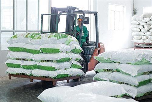 Hệ thống kho bãi với máy sấy hiện đại do Nhật Bản cung cấp của ThaiBinh Seed giúp nông sản được chế biến, bảo quản tốt nhất giữ được nhiều giá trị dinh dưỡng, tăng khả năng cạnh tranh.
