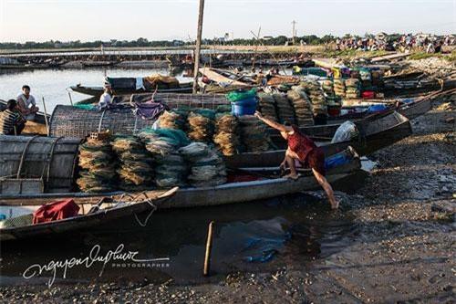 Vân Quật Đông là một ngôi làng nghèo của Thừa Thiên - Huế, chỉ có một vài người ở đây làm nông nghiệp và những người khác chủ yếu sống bằng nghề đánh bắt tôm, cá.