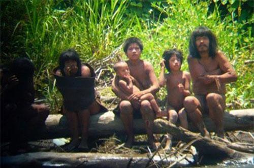Mashco-Piro, Peru: Bộ lạc Mashco-Piro, một trong 12 bộ lạc tách biệt với thế giới bên ngoài, đang sinh sống trong khu bảo tồn thuộc rừng Amazon, Peru. Dù giới chức đã nỗ lực thực hiện nhiều chính sách bảo vệ nhưng số lượng người của bộ lạc vẫn giảm dần do dịch bệnh. Bộ lạc bao gồm 3-4 nhóm người và đã trải qua nhiều cuộc tấn cống và xung đột nội bộ. Trong quá khứ, khi các công ty Dầu khí quốc tế tiến hành khai thác rừng Amazon, họ đã sử dụng bom cao su để xua đuổi người Mascho-Piro, làm nhiều thổ dân thiệt mạng. Theo Therichest, hiện nay, bộ lạc định cư ổn định trong khu bảo tồn rừng Amazon nhưng những kẻ khai thác gỗ trái phép vẫn là mối nguy hiểm. Ngoài ra, kế hoạch xây dựng một con đường chạy qua khu bảo tồn của chính quyền Peru cũng đe dọa lãnh thổ của họ một lần nữa. Ảnh: Reuters