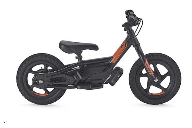 Xe dien Harley-Davidson IRONe chi 15,2 trieu dong-Hinh-2