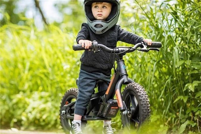 Xe dien Harley-Davidson IRONe chi 15,2 trieu dong-Hinh-6