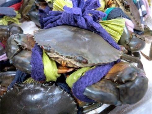 Cách chọn mua hải sản tươi ngon, không ủ ướp - ảnh 3