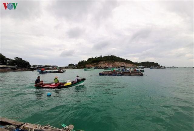 Khám phá nghề nuôi cá lồng bè thu tiền tỷ ở Nam Du - Ảnh 6.