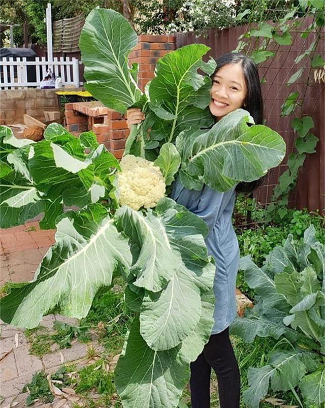 Choáng với vườn rau siêu to, siêu khổng lồ của cô nàng 8X - Ảnh 3.
