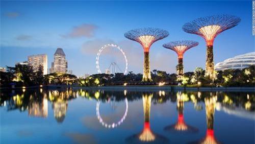 Siêu cây khổng lồ tạo 'thành phố trong vườn' ở Singapore - 1
