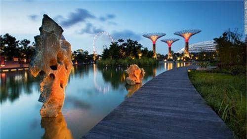 Siêu cây khổng lồ tạo 'thành phố trong vườn' ở Singapore - 3