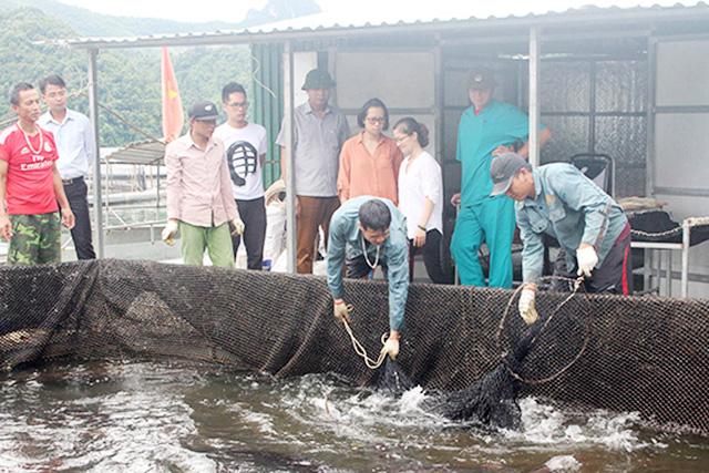 Thủy sản đang là lĩnh vực giàu tiềm năng được huyện Mường La chú trọng