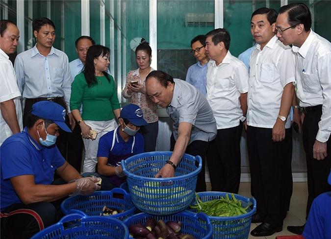 TP. HCM phải là địa phương đi đầu quản lý, bảo đảm an toàn thực phẩm