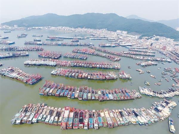 Shop TIN 3/8: Formosa xả thải, lãnh đạo Bộ TNMT ủy nhiệm bừa và... nhắm mắt ký - ảnh 7