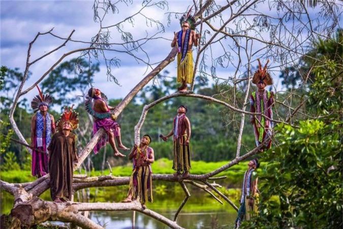 """Người dân bộ lạcKaxinaw giữ thăng bằngtrên cành cây ở khu vực Amazon thuộc bang Acre, Brazil.Ricardo là nhiếp ảnh gia chuyên nghiệp suốt 29 năm qua. Anh bắt đầu chụp hình thổ dân Brazil từ năm 1996 sau khi tới thăm bộ tộc Yanomany.""""Kể từ đó, tôi đã trở thành một người ủng hộ mạnh mẽ người dân bản địa. Bây giờ tôi đang sản xuất một cuốn sách và đã chụp ảnh của hầu hết các bộ tộc Brazil. Mục đích là để cho mọi người thấy các họ tồn tại trong một xã hội hiện đại. Họ sống trong sự hòa hợp hoàn hảo với thiên nhiên và điều này vẫn tồn tại ở một số khu vực, tất nhiên, ngay cả trong một xã hội ngập tràn công nghệ"""", anh chia sẻ."""