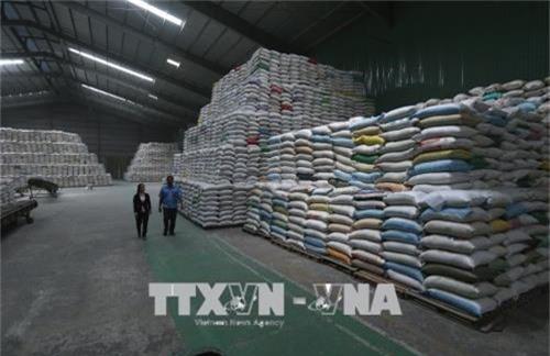 Sản phẩm gạo xuất khẩu được tạm trữ tại kho của công ty Lương thực Sông Hậu (Sông Hậu Food) thành phố Cần Thơ. Ảnh: Vũ Sinh/TTXVN