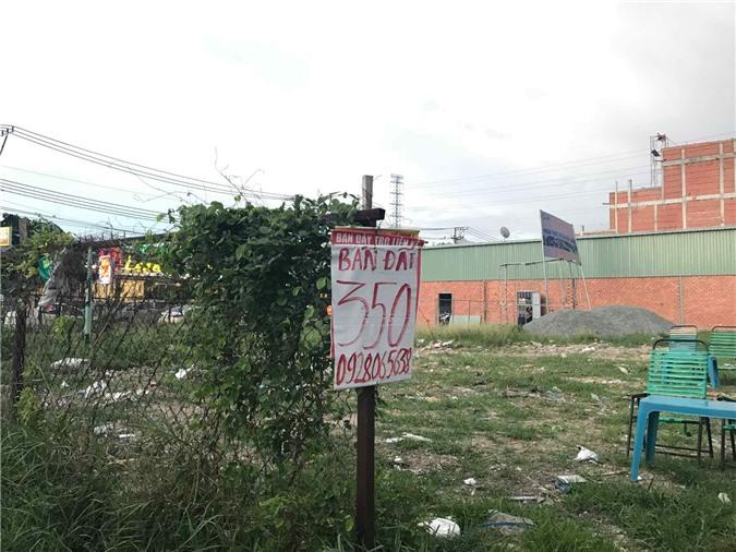 Nhiều biển hiệu bán đất nhưng rất ít người mua.