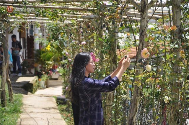 Rời bỏ phố thị, cô gái Sài Gòn lên Đà Lạt cùng bạn trai xây dựng khu vườn giữa núi rừng hoang vu dành cho thú cưng - Ảnh 7.