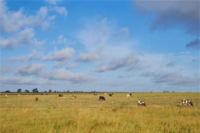 15 chủ đất lớn nhất tại Mỹ - Ảnh 7.