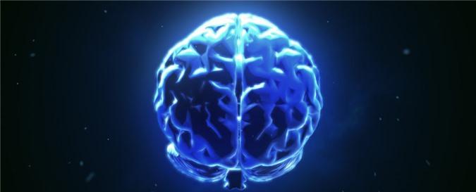 Kết nối não - não