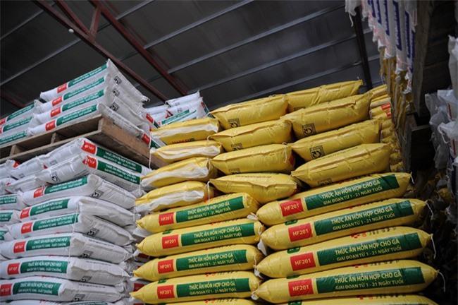 Doanh nghiệp thức ăn chăn nuôi gặp những bất cập về thuế (ảnh HH).