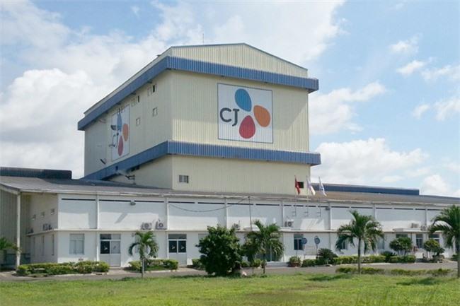 Công ty CJ Việt Nam lo khó cạnh tranh vì thuế suất nhập khẩu thiếu công bằng (ảnh HH).