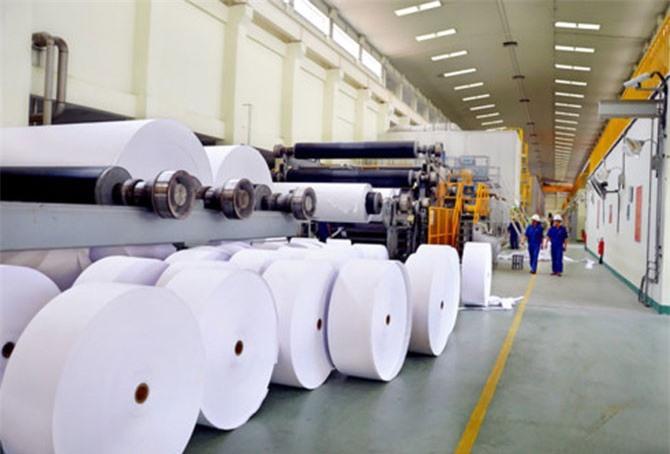 Việt Nam vẫn phải nhập khẩu 2 tấn giấy/năm.