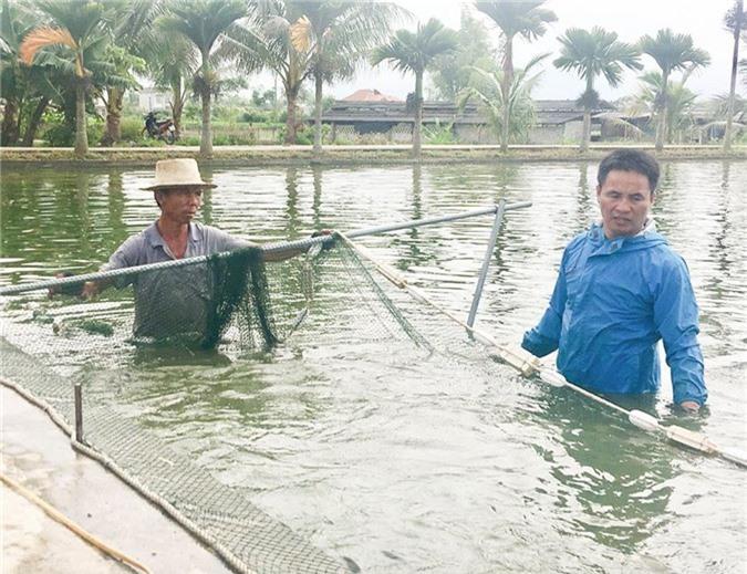 HTX Thủy Sản Thanh Chăn, tỉnh Điện Biên hiện có hơn 21 hội viên liên kết sản xuất cá giống cho thu nhập từ 200-400 triệu đồng/hộ/năm