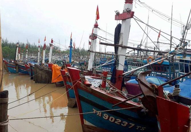 Nhiều tàu cá phải lưu lại bờ vì giá dầu tăng.