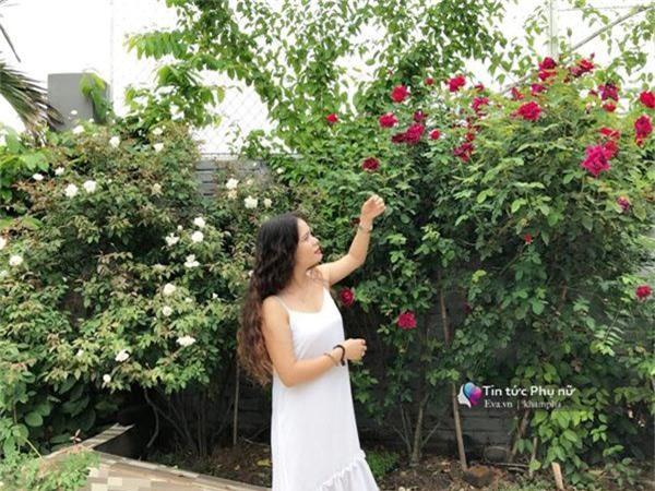 """Chuyển hàng tấn đất làm ao sen, trồng hồng trên sân thượng, mẹ HN xây """"thiên đường"""" phủ kín hoa - 14"""