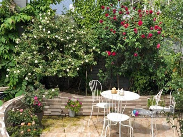"""Chuyển hàng tấn đất làm ao sen, trồng hồng trên sân thượng, mẹ HN xây """"thiên đường"""" phủ kín hoa - 17"""