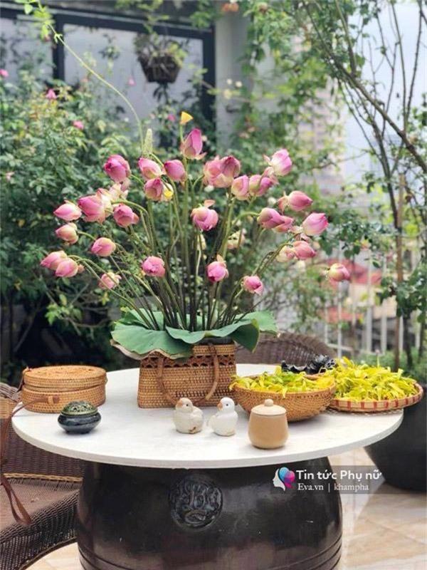 """Chuyển hàng tấn đất làm ao sen, trồng hồng trên sân thượng, mẹ HN xây """"thiên đường"""" phủ kín hoa - 20"""