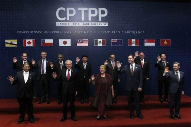 CPTPP sẽ có hiệu lực cuối năm nay.