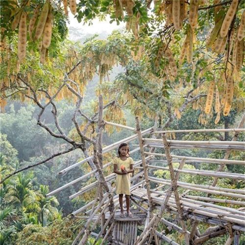 Trong làng luôn giữ được môi trường sống trong lành