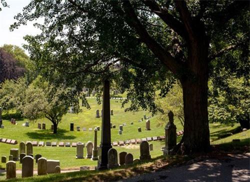 Quản lý nghĩa trang