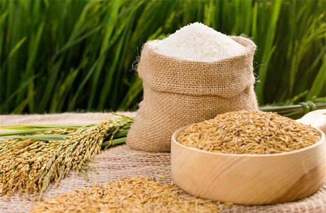 Gạo Việt đã xâm nhập vào các thị trường màu mỡ.